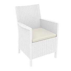 So here is the chair.  We purchased 2 of them - no cushion - I have red & white stripe cushions from Pottery Barn