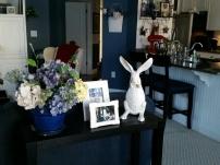 My sweet little bunny