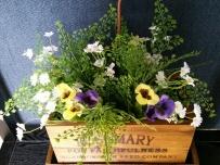 Faux flowers ~