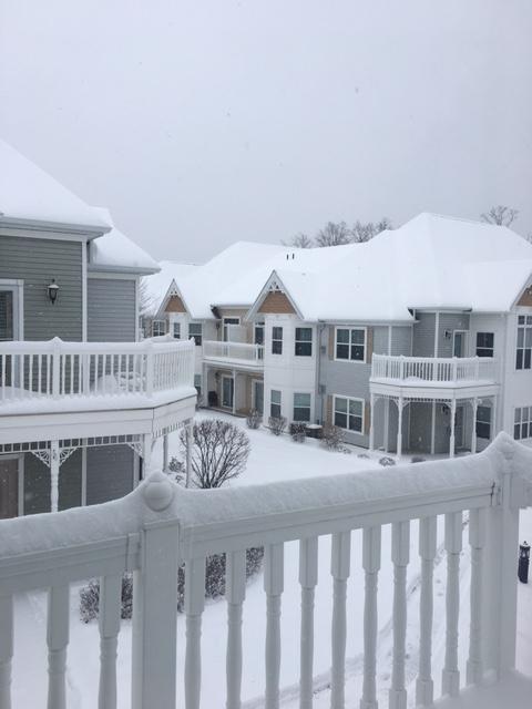 snow-2017-3